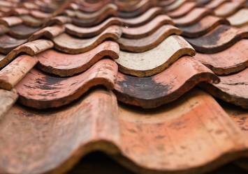 Pantiles on a pitched roof.